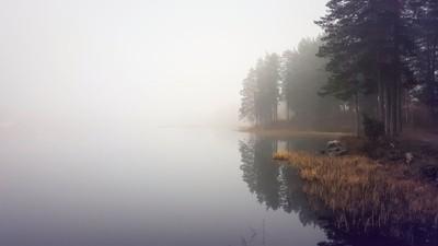 lake solitude and reflections
