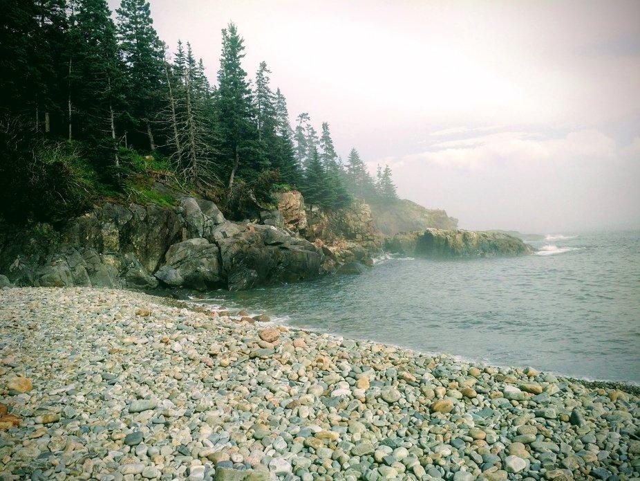 Foggy Pebble Cove