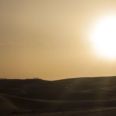 Puesta de sol a una excursion en camello en Merzouga (desierto del Sahara en Marruecos)