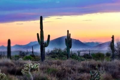 Arizona Pastel, Sunset