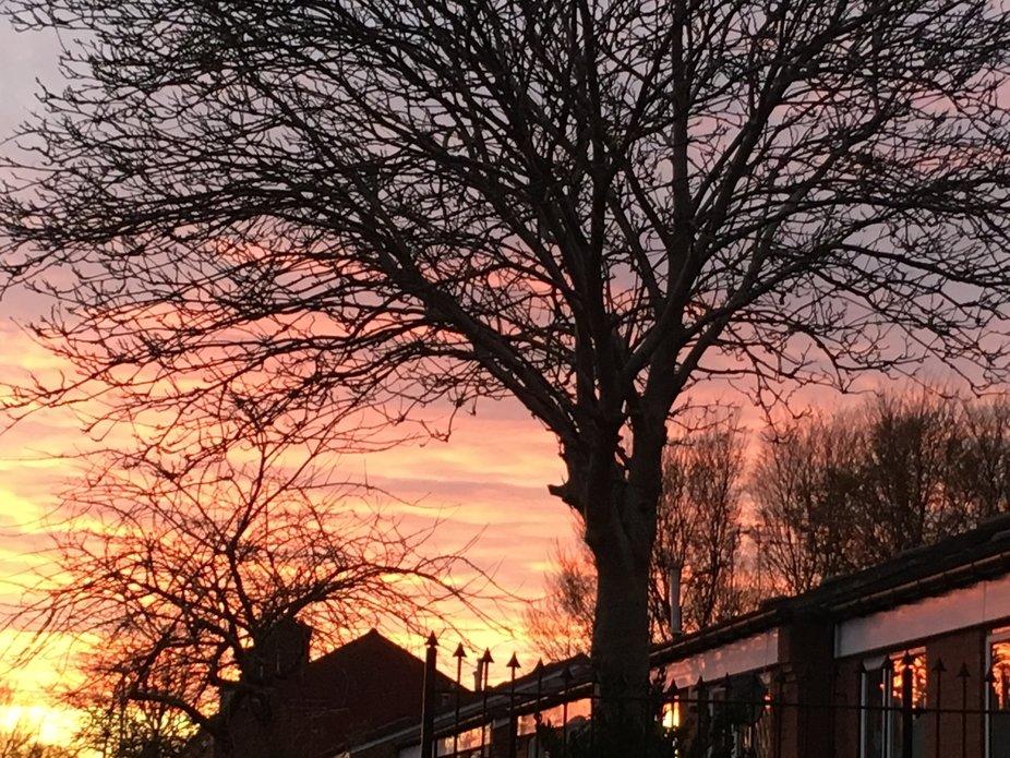 Atherton at sunset