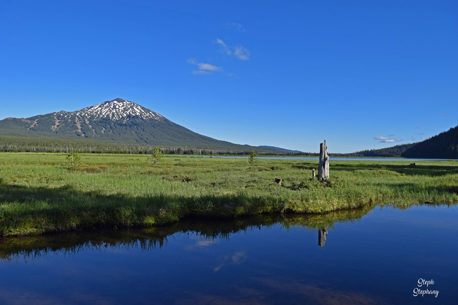 Summer time view of Mount Bachelor across the meadow