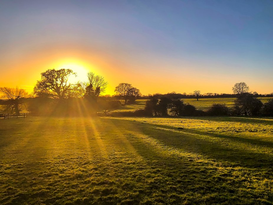 Evening light in Silchester, Hampshire, UK