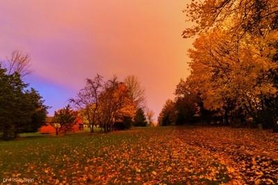 November Light