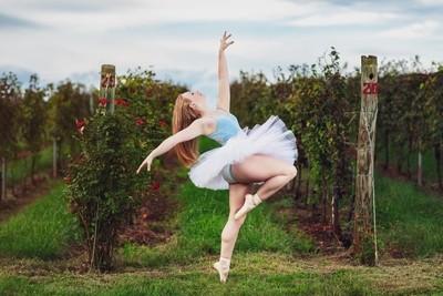 Vineyard Ballerina