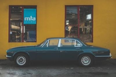Blue Jag