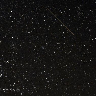 Stary Sky and Shooting Star