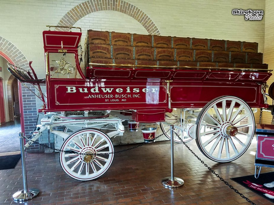Went to Anheuser Busch Brewery while at NASCAR race this summer..I am a HUGE BUDWEISER COLLECTOR