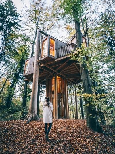 Celje treehouse.