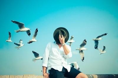 BIRDS SET FREE