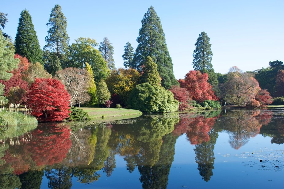 November at Sheffield Park