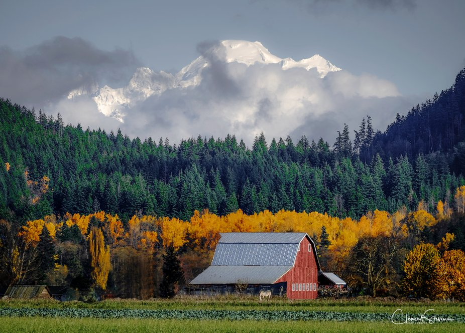 Skagit Valley Fall