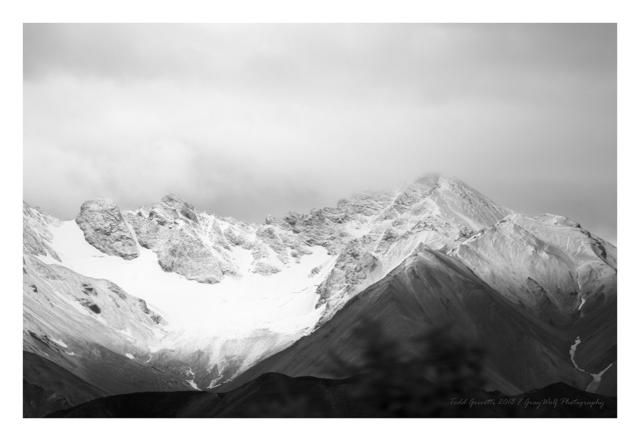 Black and White of polychrome pass.