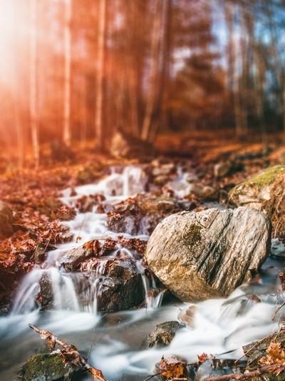 Fall Stream II
