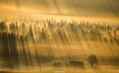 Magic of light