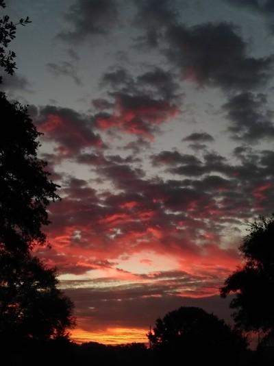 Gorgeous sunrise this morning in San Antonio Texas!