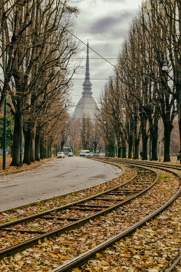 Turin and autumn street colours
