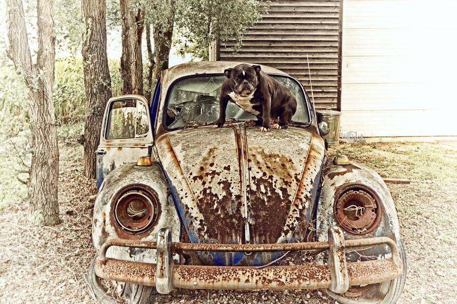Random Travels - Saw the car... Stopped to ask permission to photography it. Bob (the owner) ws v...