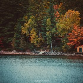 Cottage Life  Colors slowly fading, the icy fingers of winter slowly grasping at the heels of fall.   Lawrence D. Griffin