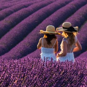 The late evening light gently touched these two dear friends as they stood taking in the beauty of the lavender fields that stretched beyond.