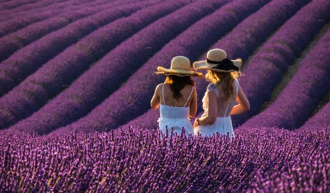 Golden_Moments_In_Time by Luminous_Explorer - Shades Of Purple Project