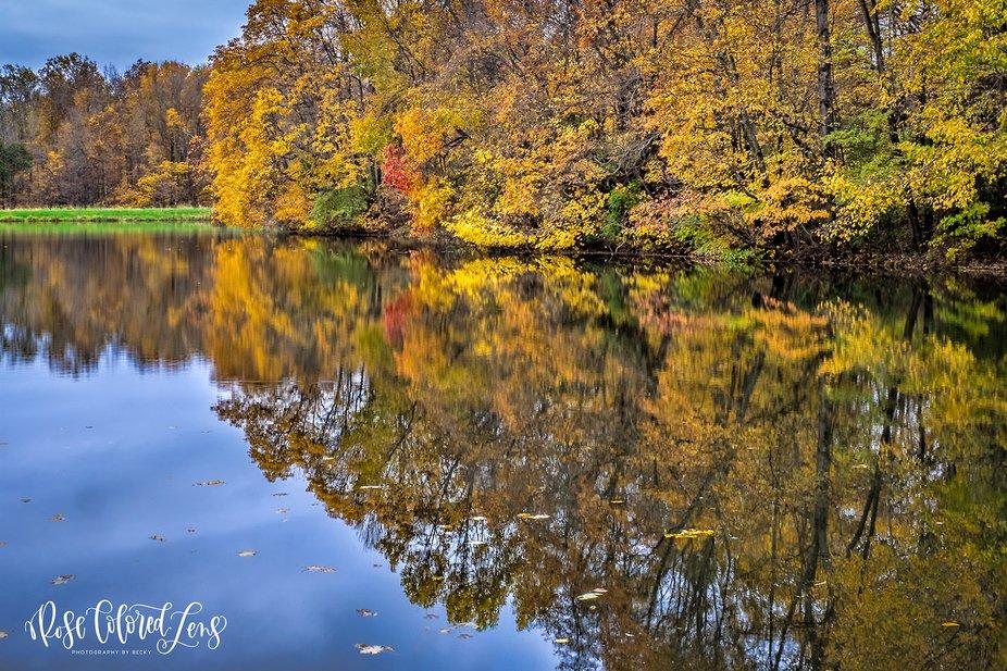 Autumn's splendor reflected