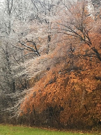 Where Fall and Winter met in 2018