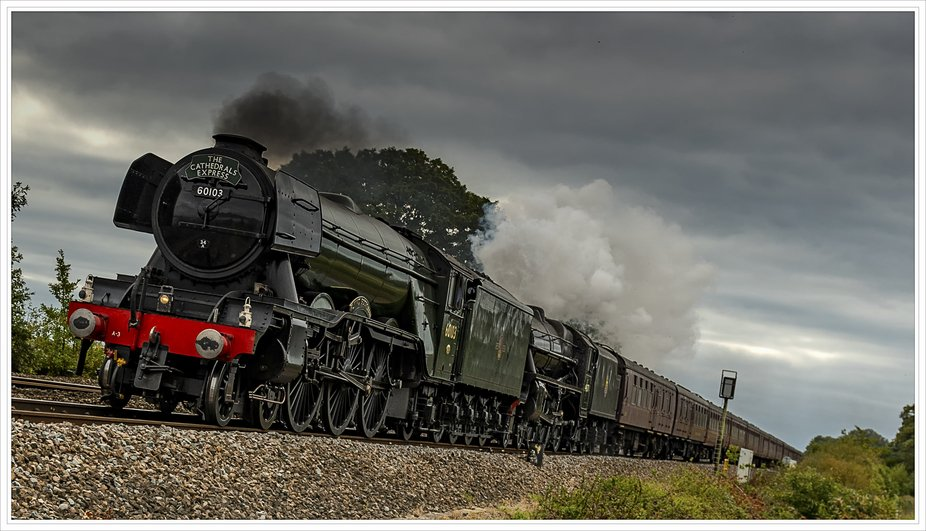 This is the Flying Scotsman coming through Devon, Lovely to see such a magnificent train on our t...
