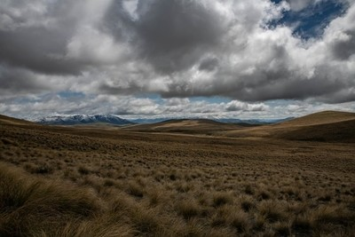 Tussock and Cloud