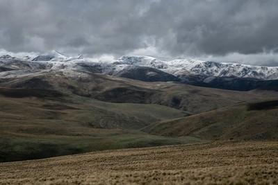 Rolling Otago Landscapes