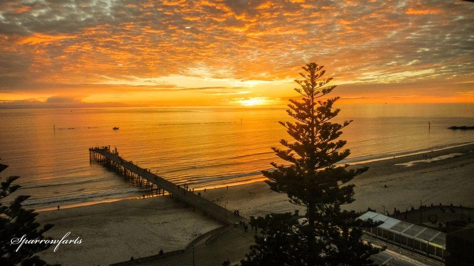 June 2108 - taken at Stamford Hotel Glenelg South Australia