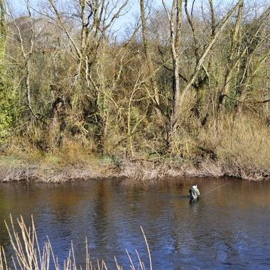 Fishing on the river Shannon