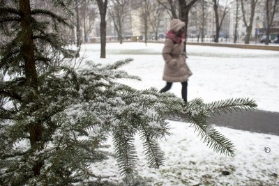walk away in snow
