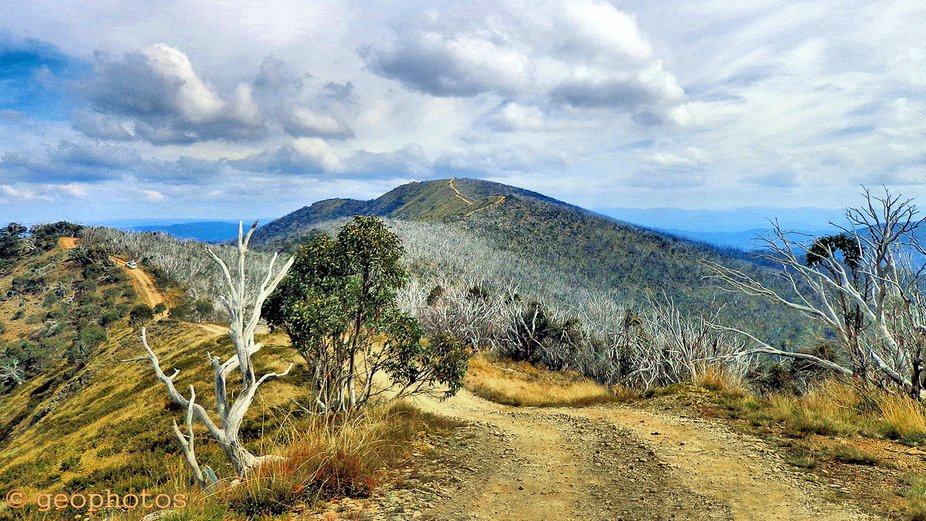 On a 4WD trip to the Victorian Alps, in Australia, the scenery was superb! Years ago, this area w...