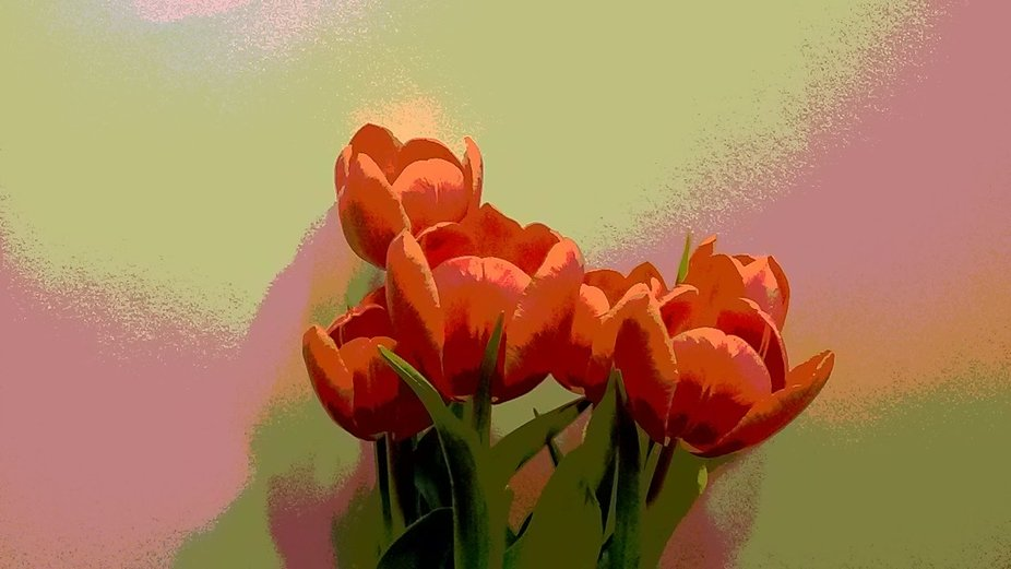 I set up a white poster board back drop and did a photo op with some tulips I had purchased for m...