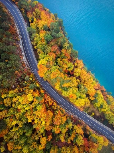 Europe's had one of the best autumn's this year & for the fall break we'd driven to Switzerland. The colours were just magnificent around Thunersee & Lauterbrunnen.  Sadly, the leaves are falling fast & will soon disappear!