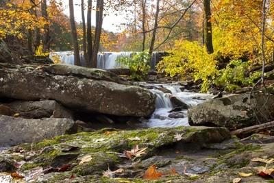 Waterfall Delight