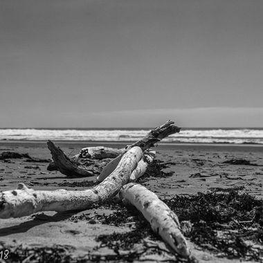 Ocean Beach, NZ.