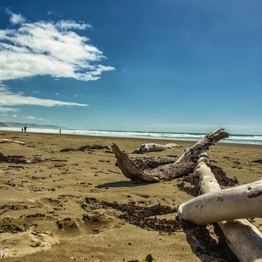 Christmas day. Ocean Beach, NZ.
