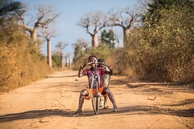 Fun among the baobabs