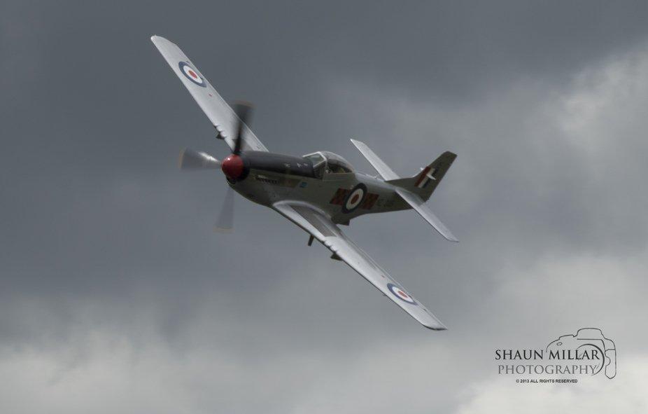 Mustang P51-D