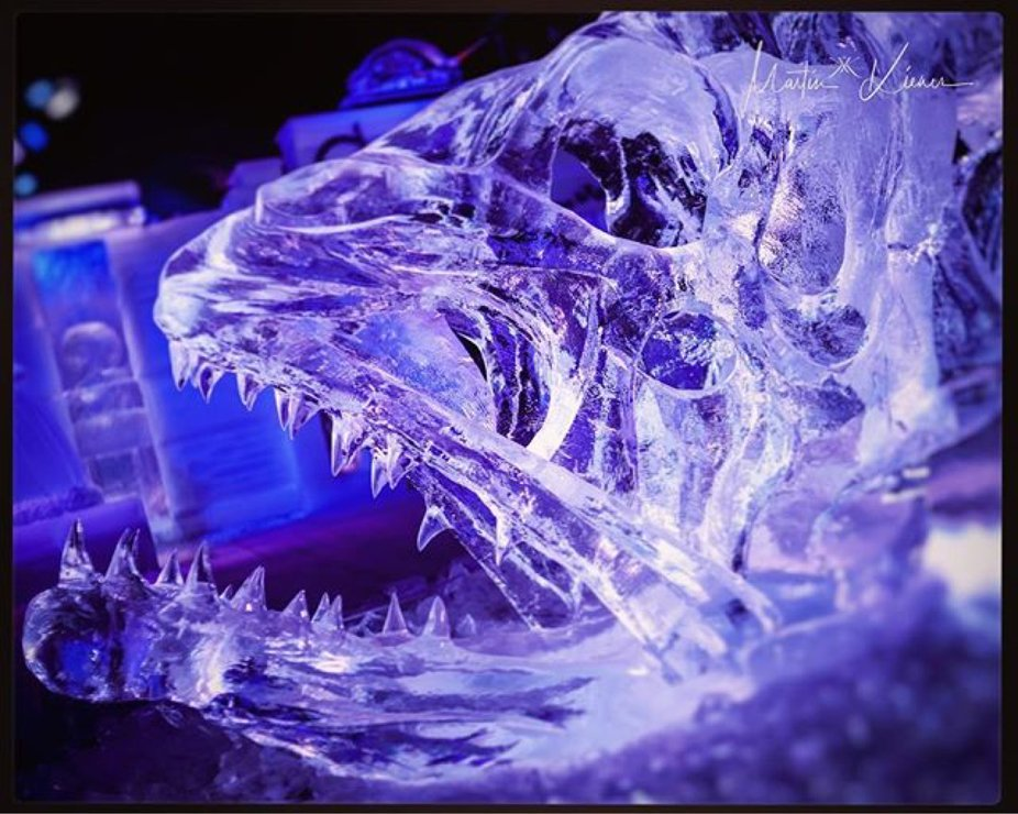 Winter Is Coming - Ice Magic Linz