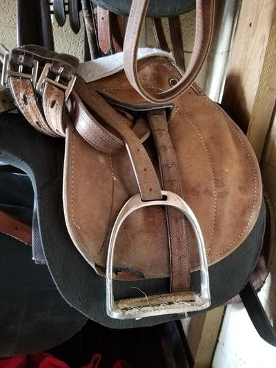 Older Exercise Saddle