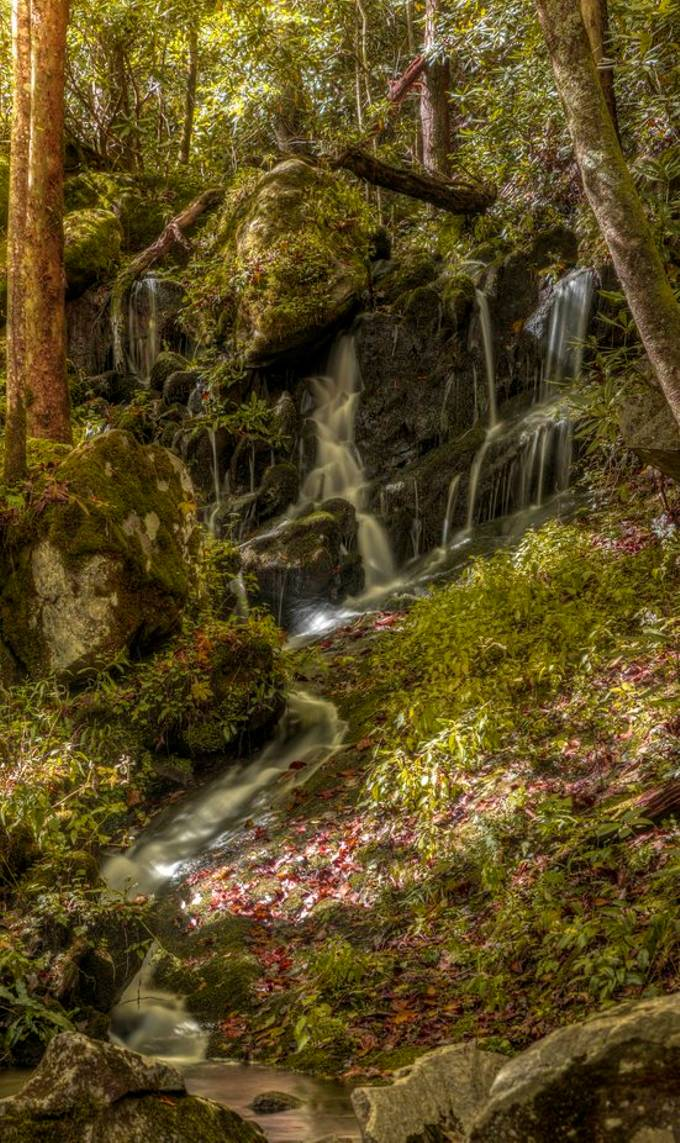 Waterfall in Great Smoky Mountains