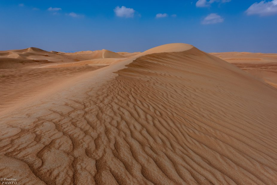 This was taken at Maliha Sand Dunes, Sharjah UAE. This is part of the wide Desert sand area along...