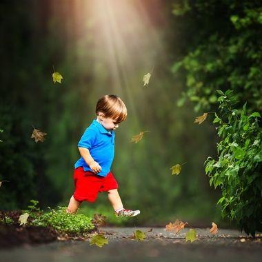 Toddler Stroll