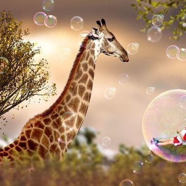 Magical Bubbles