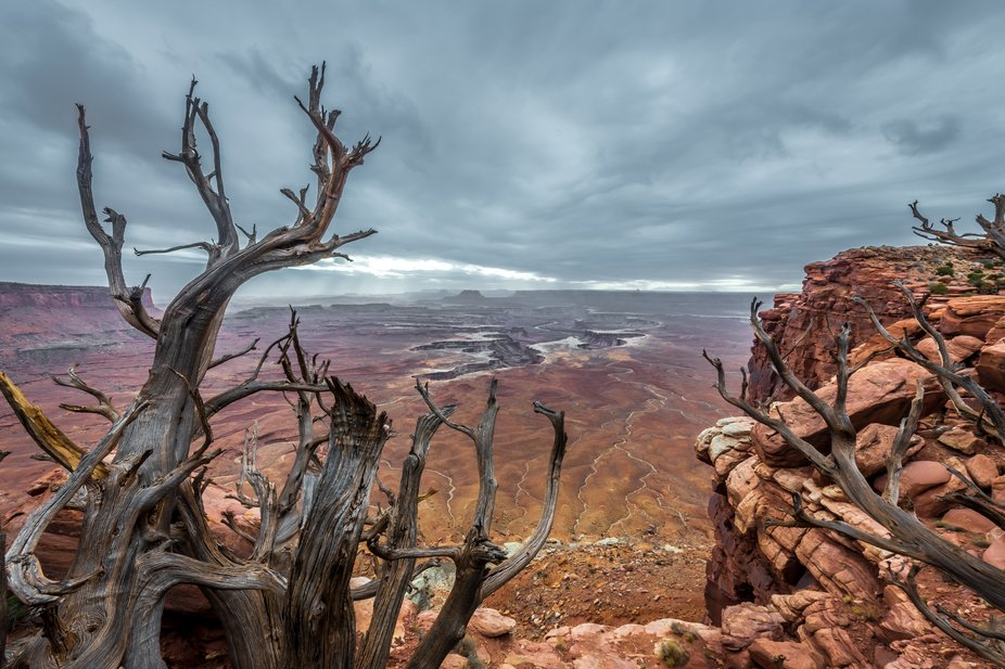 Green River Overlook, Island in the Sky District, Canyonlands National Park, Utah. Freezing cold ...