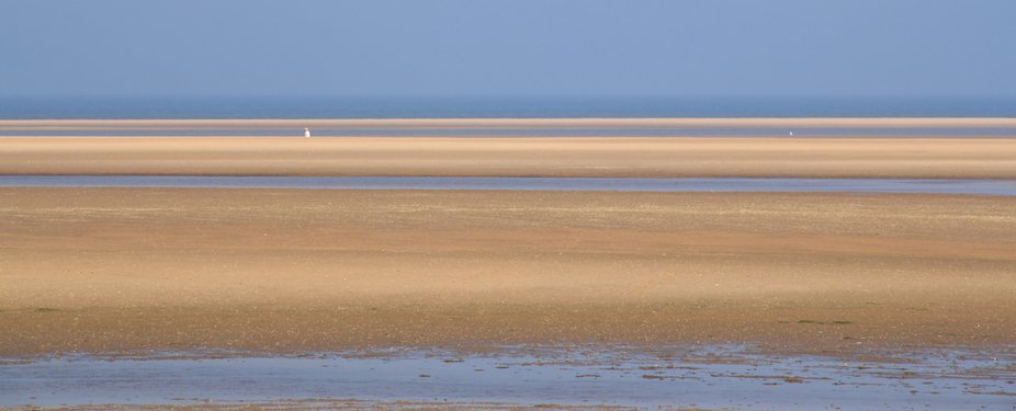 On the north coast of Norfolk  the tide takes the sea out for miles leaving the these ribbons of ...