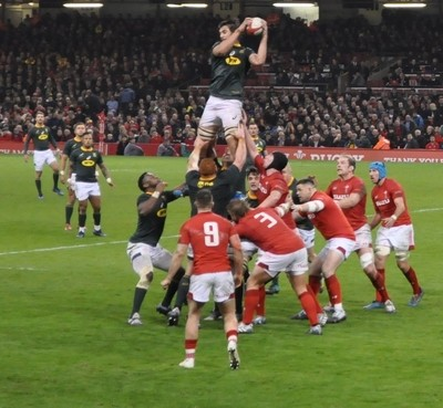 Wales v S.Africa